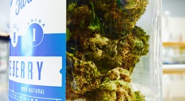 Legal Weed Stores Bellingham